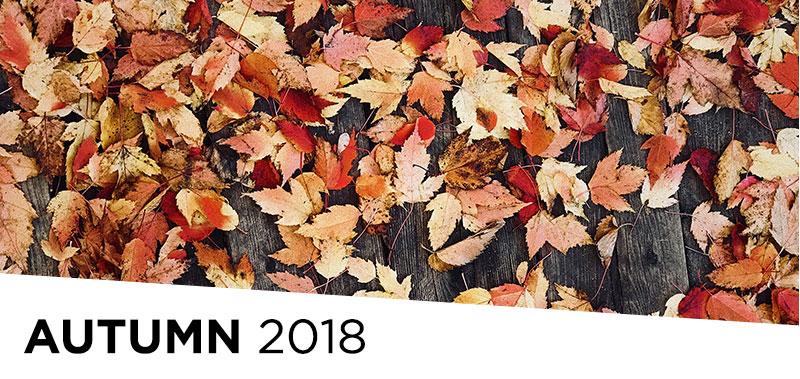 UMMA News: Autumn 2018 Edition